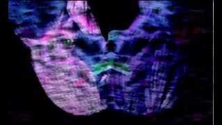 Kiss & Audiofly & Paul Harris - Miscalate