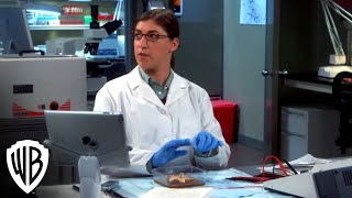 "The Big Bang Theory S8 – ""The Pleasure Principle"""