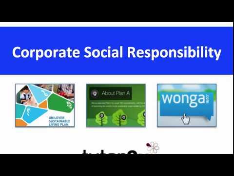 BUSS4 Section B: Corporate Social Responsibility (CSR)