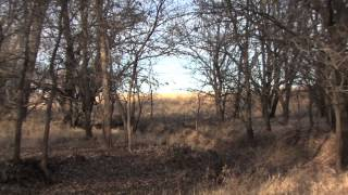 Arrowhead Ranch For Sale in McPherson Co Kansas