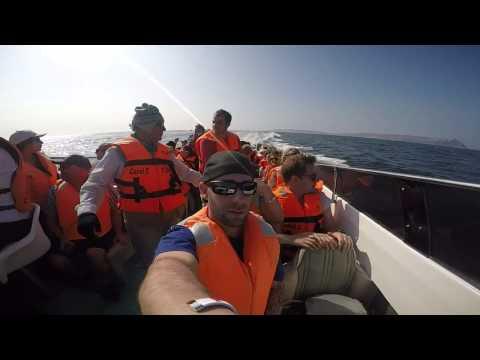 Nazca Lines, Sea Lions & Lima Road Peru GoPro HD