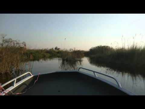 Motor boat ride through grasses, Vumbura Plains, Botswana, 2015-10-02