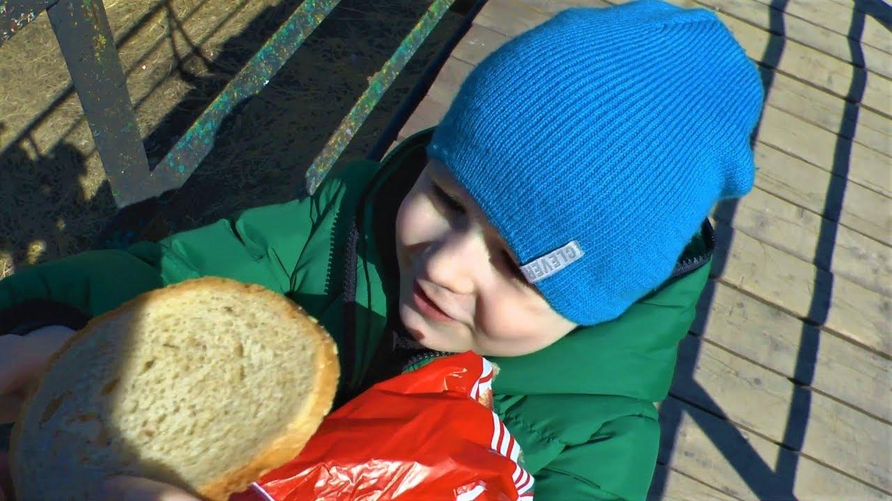 Макс кормит уток - Видео для детей
