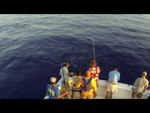Sea Hunter 2016