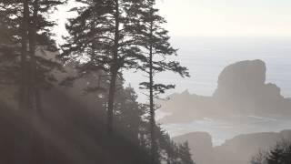 Ecola State Park near Cannon Beach, Oregon