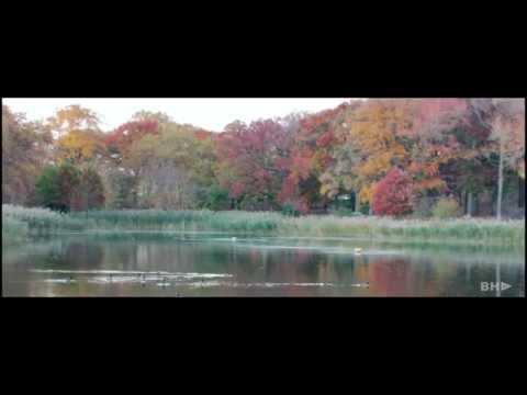 Crotona park Bronx NYC