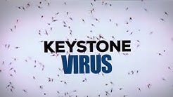 US: New mosquito-borne virus found in humans for first time (Keystone virus)