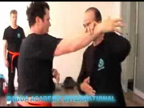 SELF DEFENCE IN SYDNEY  AUSTRALIA - BAGUA ACADEMY