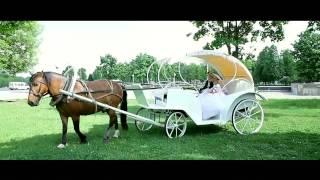 Промо-ролик свадьбы