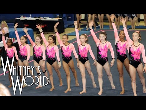 Whitney Bjerken | 5th Level 8 Gymnastics Meet | New Team
