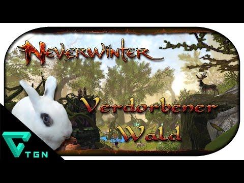 Neverwinter: Kampagnen ► Sharandar #02 - Der Verdorbene Wald