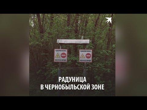 Радуница в Чернобыльской зоне
