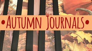 Craft Fair Idea #14:  Autumn Journals | Easy way to alter a composition book!