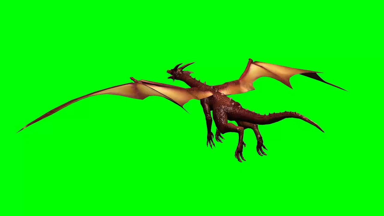 dragon fly green screen effects 11 youtube