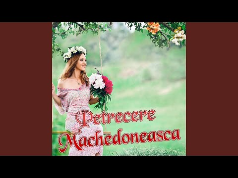 Petrecere Machedoneasca (Colaj Muzica Moldoveneasca)