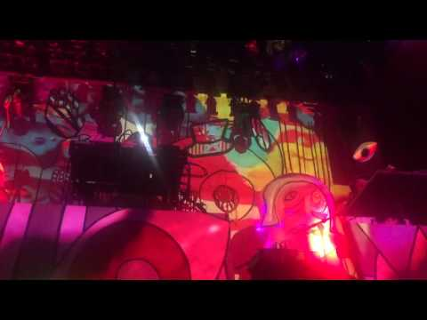 Animal Collective - Golden Gal - live @ Rewire Festival The Hague 04-02-2016
