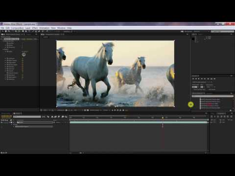 AKVIS Sketch Video Classic in Premiere Pro from YouTube · High Definition · Duration:  2 minutes 8 seconds  · 1,000+ views · uploaded on 7/5/2016 · uploaded by AKVIS