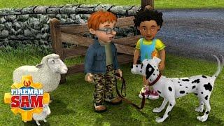 fireman sam official radar sheepdog or rescue dog