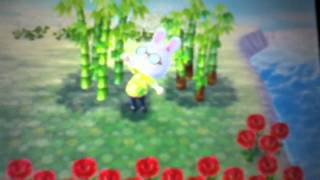 Animal Crossing New Leaf: Bamboo Tips