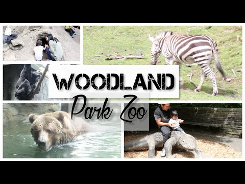 SEATTLE CITY PASS - WOODLAND PARK ZOO | Nikki+MitchTV