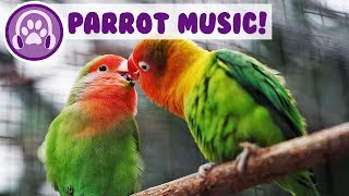 Relaxing Music for Parrots! Calm Your Bird and Help them Sleep! screenshot 4