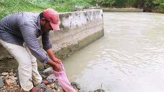 Amazing Fishing || Incredible Baam fishing