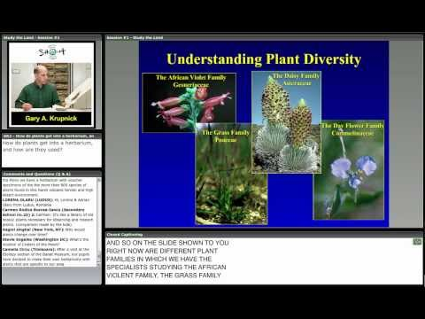 A Natural History Approach to Plant Study and Conservation