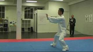 tai chi 85 forms part 2 traditional yang style