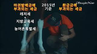 4 한국전쟁 영웅 경주마 '아침해'  - 경마, 국민레…