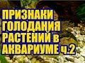 Признаки минерального голодания у Аквариумных растений Макроудобрения ч 2 Удобрения для аквариума mp3