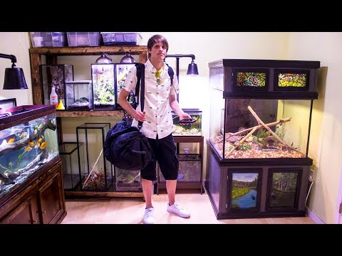 Prepping My Animal Room For Vacation – Vlog #1