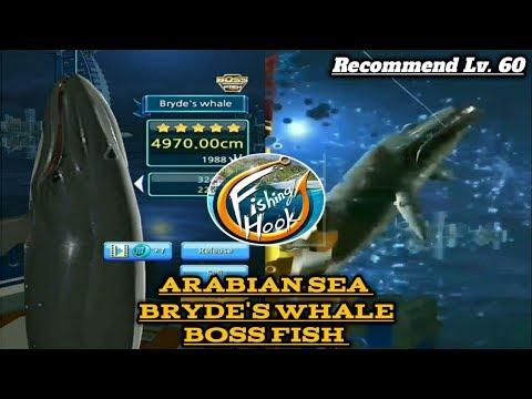 Paus Boss Bryde's whale - arabian sea (Boss fish) kail pancing / fishing hook