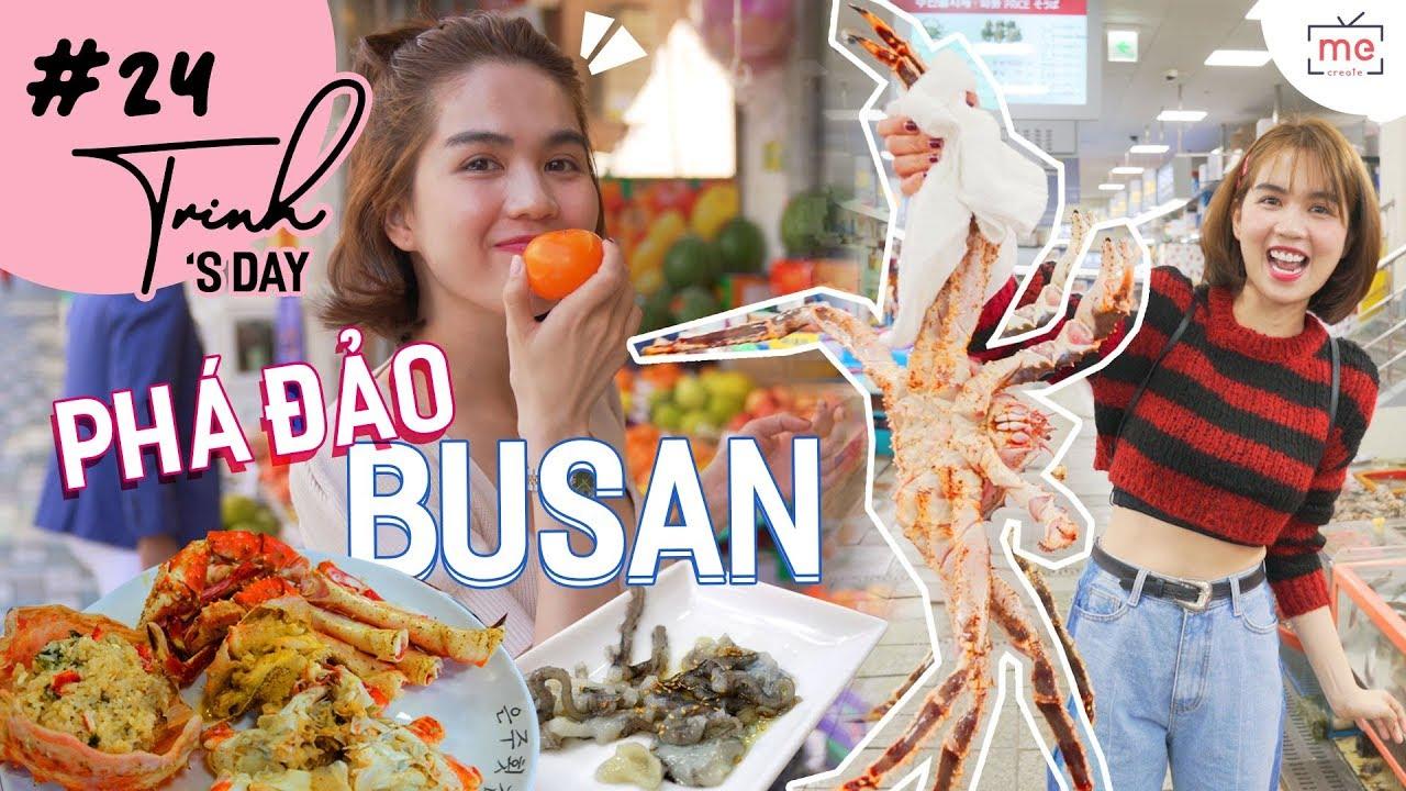 Ngọc Trinh – My Day #24 | Phá Đảo Busan – Ăn Thử King Crab, Bạch Tuộc Sống…
