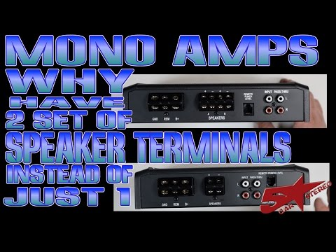 Why does my Mono Subwoofer amp have 2 sets of speaker terminals