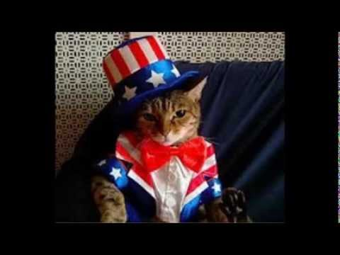 The United States National Anthem in a Foreign Language (Meow)