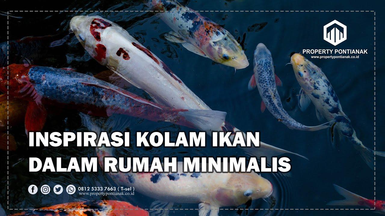 Kolam Ikan Dalam Rumah Minimalis Desain Kolam Ikan Dalam Rumah Minimalis Youtube