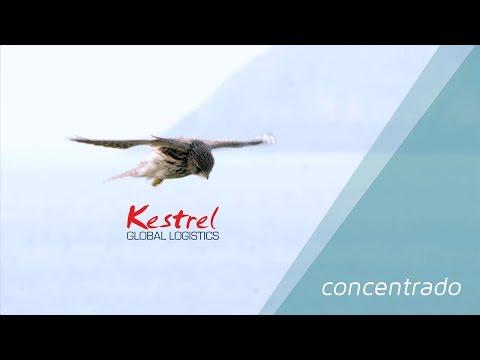 Kestrel Global Shipping