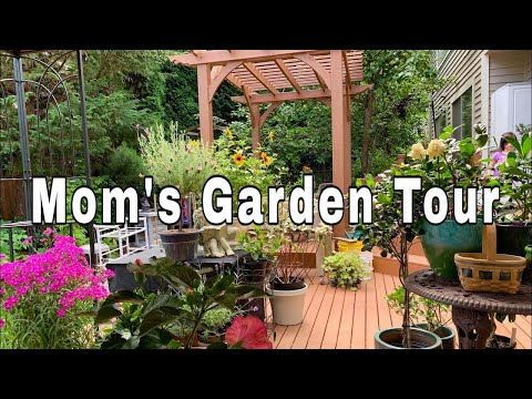 My Mom's Garden Tour PNW Zone 8b July 2019