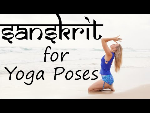 learn sanskrit names of basic yoga poses  youtube