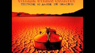 Would? Vitamin String Quartet of Alice in Chains