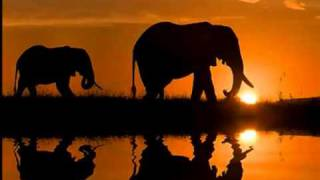 Out of africa - soundtrack  - YouTube.flv