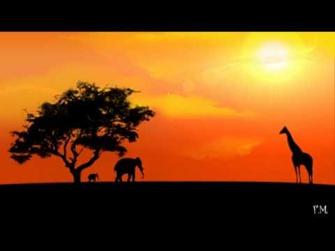 Comment est perçue l'Afrique aux Antilles ?