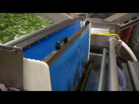 Baby leaf sorting machine Helius - TOMRA Sorting