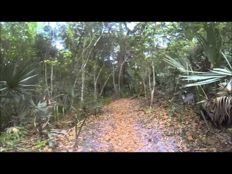 Hanna Park MTB Trail System Atlantic Beach Florida Jacksonville Area