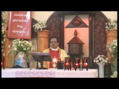 Festive High Mass – St Mary's Church Rathmalana