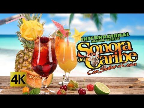 Sonora Del Caribe - Concierto Feria En La Costa 4K