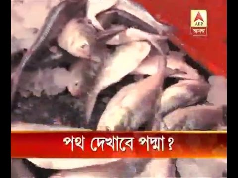 Bangladesh takes strong step to save 'hilsa' fish