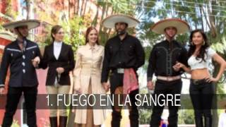 Las mejores telenovelas de Jorge Salinas