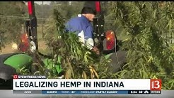 Legalizing hemp in Indiana