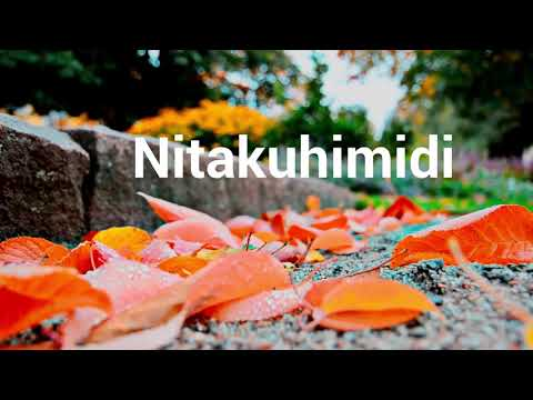 Nitakuhimidi Worship Video Lyrics-Kayole Main Altar